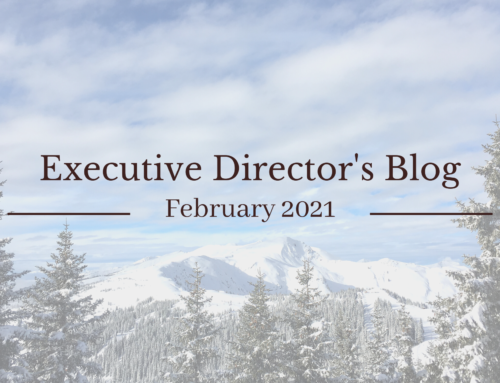 February 2021 Executive Director's Blog